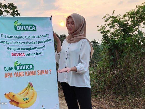 Bukit villa cavendish, kavling produktif buah pisang Merk Dagang Buvica